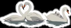 White Swans In Water Illustration Sticker