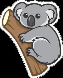 Wide Eyed Koala On A Tree Sticker