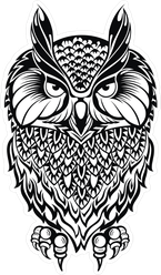 Wise Old Owl Illustration Sticker