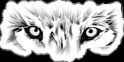 Wolf Eyes Sticker