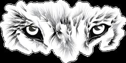 Wolf's Face Close Up Illustration Sticker
