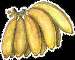 Yellow Banana Bunch Sticker