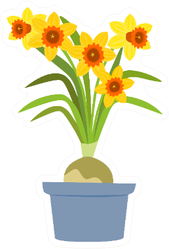 Yellow Daffodils In A Blue Pot Illustration Sticker
