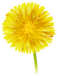 Yellow Dandelion Sticker