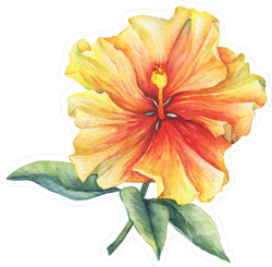 Yellow-Red Hibiscus Flower Sticker