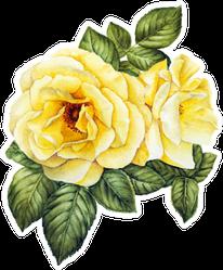 Yellow Rose Flower Watercolor Sticker