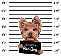 Yorkshire Terrier Criminal Sticker