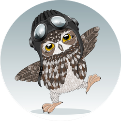 Young Cute Owl Sticker