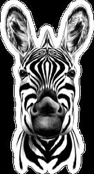 Zebra Head Sticker