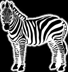 Zebra Illustration Sticker