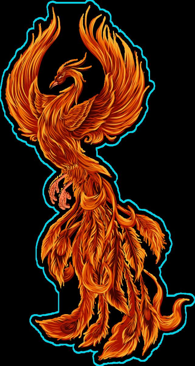 MTGNexus - Immortal Phoenix Art by Daarken