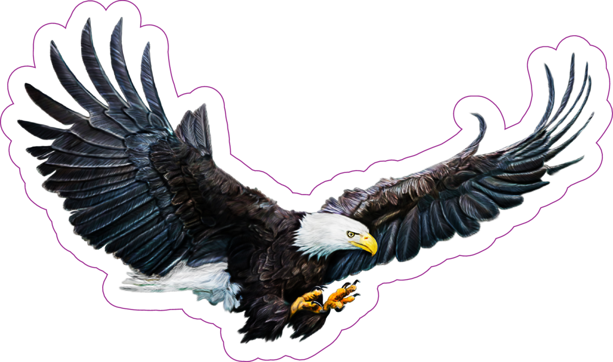 Bald eagle digital painting sticker