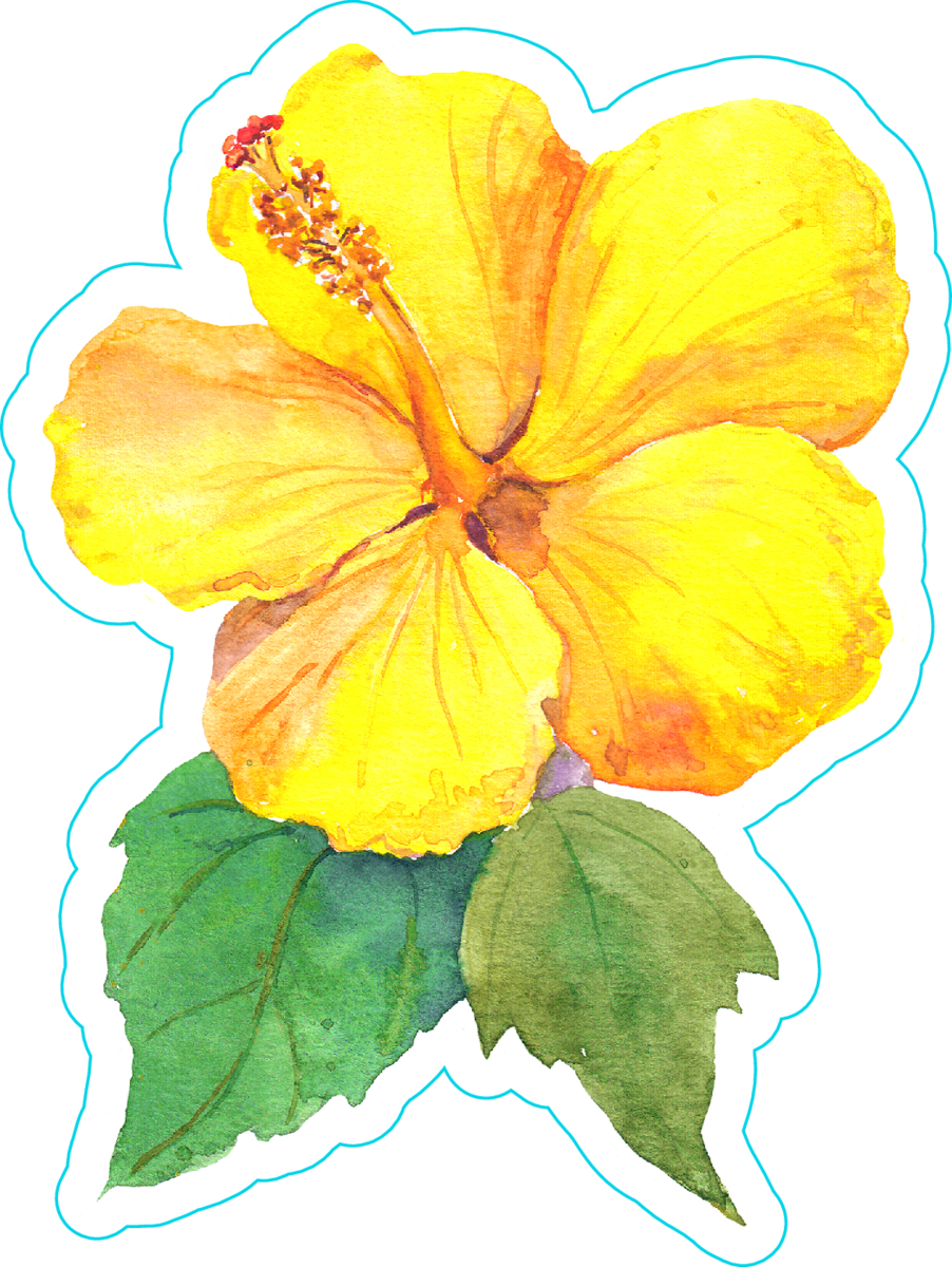 Yellow Hibiscus Flower Watercolor Sticker