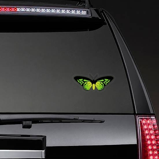 Amazing Green Butterfly Sticker on a Rear Car Window example