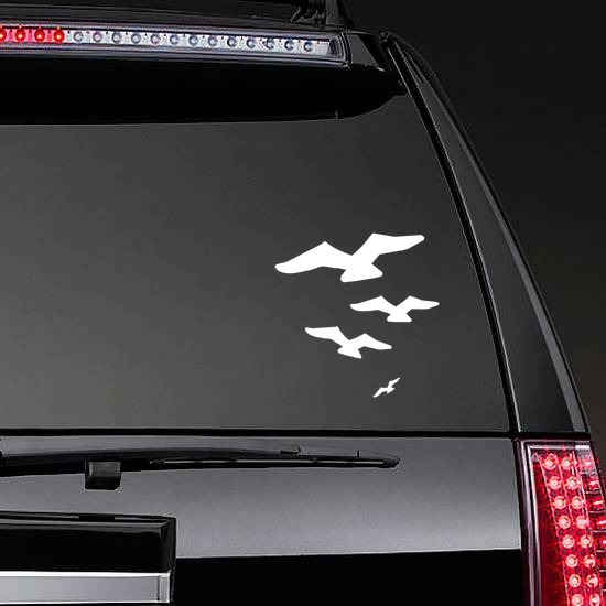 Four Seagulls Flying Sticker on a Rear Car Window example