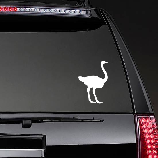 Ostrich Sticker on a Rear Car Window example