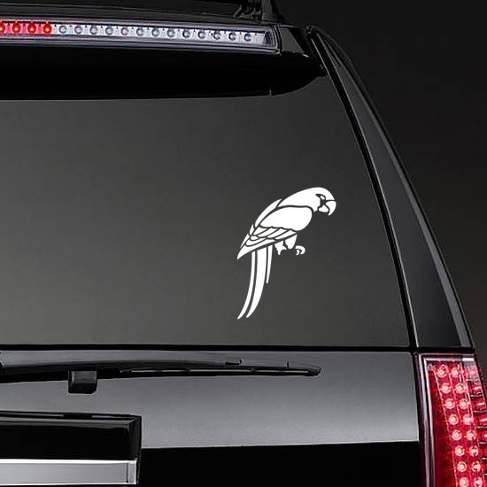 Parrot Looking Down Sticker on a Rear Car Window example