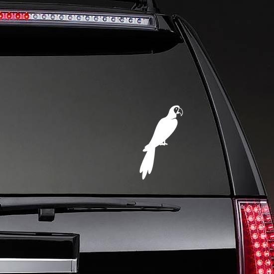 Parrot Sticker on a Rear Car Window example