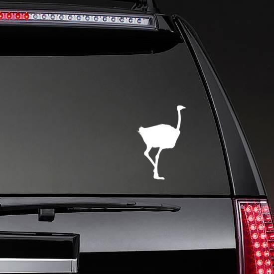 Realistic Ostrich Sticker on a Rear Car Window example
