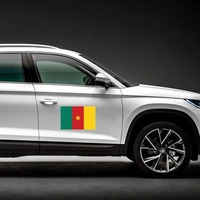 Cameroon Flag Magnet on a Car Side example