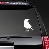 Crow Sticker on a Rear Car Window example