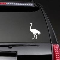 Cute Ostrich Bird Sticker on a Rear Car Window example