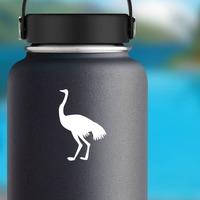 Cute Ostrich Bird Sticker on a Water Bottle example