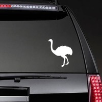 Cute Ostrich Sticker on a Rear Car Window example