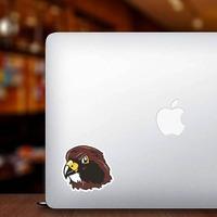 Hawk Head Mascot Sticker on a Laptop example