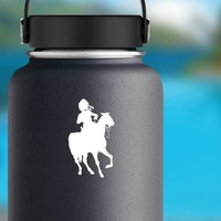 Indian Riding Horse Sticker on a Water Bottle example