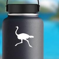 Ostrich Bird Running Sticker on a Water Bottle example