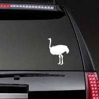 Ostrich Bird Sticker on a Rear Car Window example