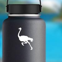 Ostrich Running Sticker on a Water Bottle example