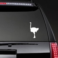 Ostrich Standing Sticker on a Rear Car Window example