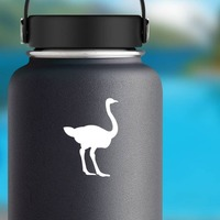 Ostrich Sticker on a Water Bottle example