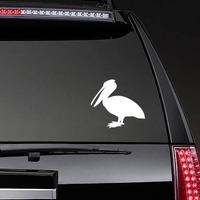 Pelican Bird Sticker on a Rear Car Window example