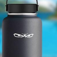 Piercing Eyes Sticker on a Water Bottle example