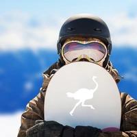 Running Ostrich Bird Sticker on a Snowboard example
