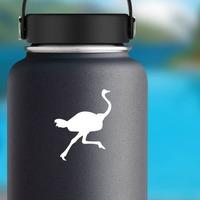 Running Ostrich Bird Sticker on a Water Bottle example