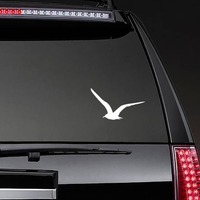 Seagull Flying Sticker on a Rear Car Window example