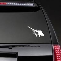 Seashell Sticker on a Rear Car Window example