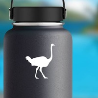 Silly Ostrich Walking Sticker on a Water Bottle example
