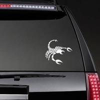 Striped Scorpion Sticker on a Rear Car Window example