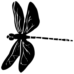 Amazing Dragonfly Sticker