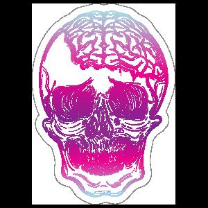 Skull with Exposed Brain Sticker