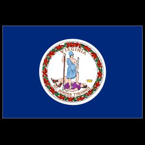Virginia Va State Flag Magnet