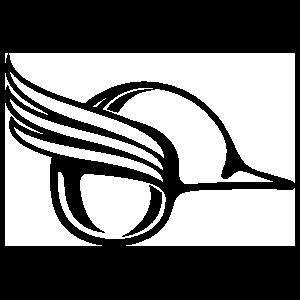 Viking Helmet with Wings Sticker