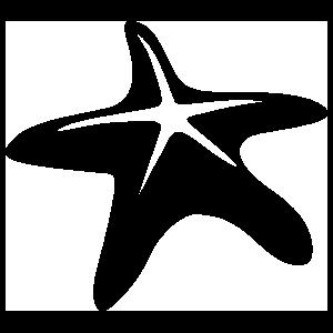 Simple Starfish Sticker