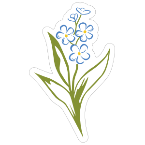 Alpha Phi Forget Me Not Flower Sticker