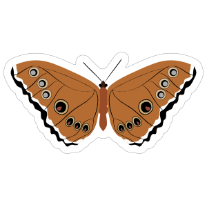 Amazing Brown Spotted Butterfly Sticker